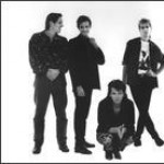 Purchase Icehouse MP3