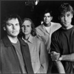 Purchase Gin Blossoms MP3