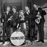 Purchase The Tremeloes MP3