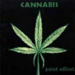 Purchase Cannabis MP3