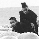 Purchase Black Sheep MP3