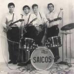 Purchase Los Saicos MP3