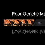 Purchase Poor Genetic Material MP3